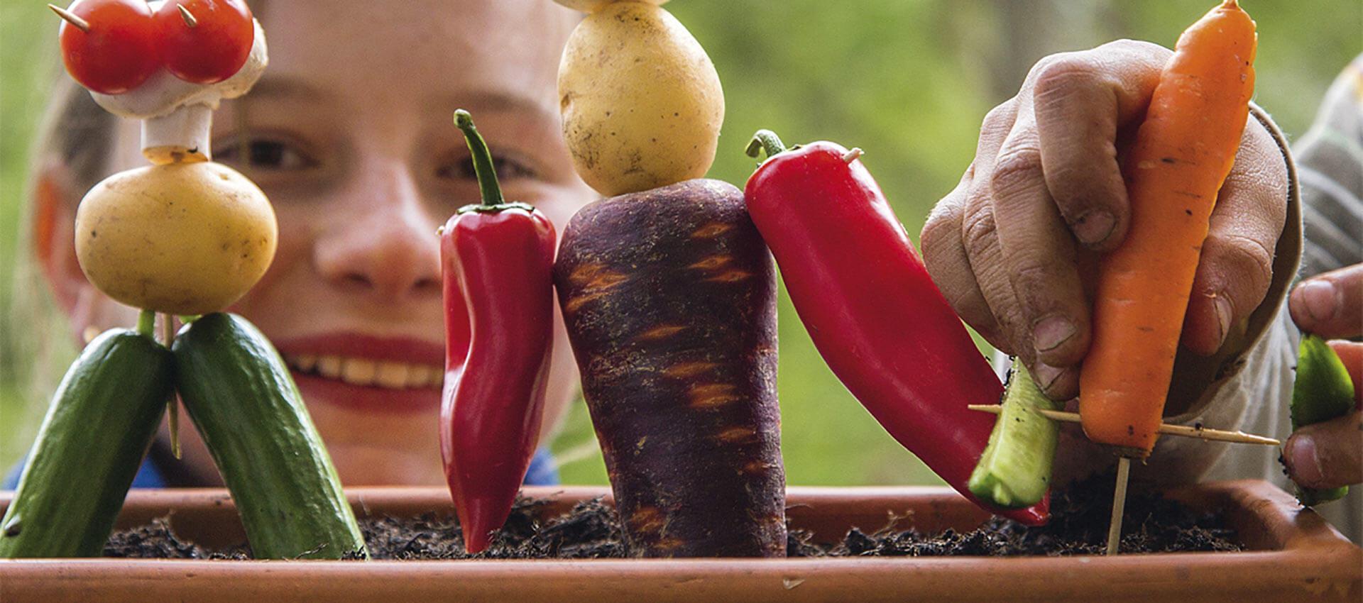 Samen und Gemüse